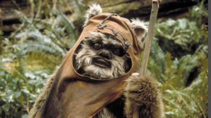 Fashion Trends 2021: The tunic is of an Ewok in Star Wars VI : return of The Jedi