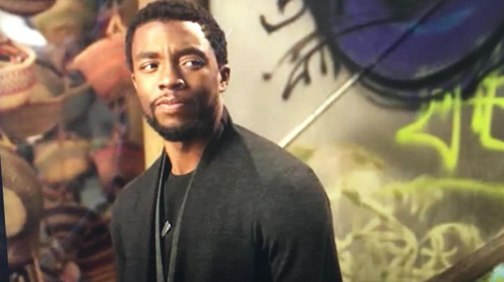 The vest You Challa aka Black Panther (Chadwick Boseman) overview at the end of the movie the Black Panther movie