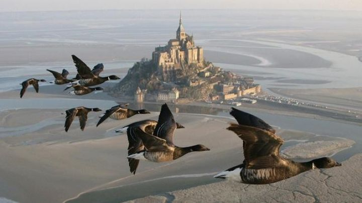 The view of Mont Saint -Michel in The Migrating People - Movie Outfits and Products