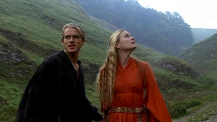 The wig buttercup (Robin Wright) in the Princess Bride - Movie Outfits and Products