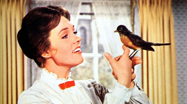 The wig is brown in Mary Poppins (Julie Andrews) in the movie Mary Poppins - Movie Outfits and Products