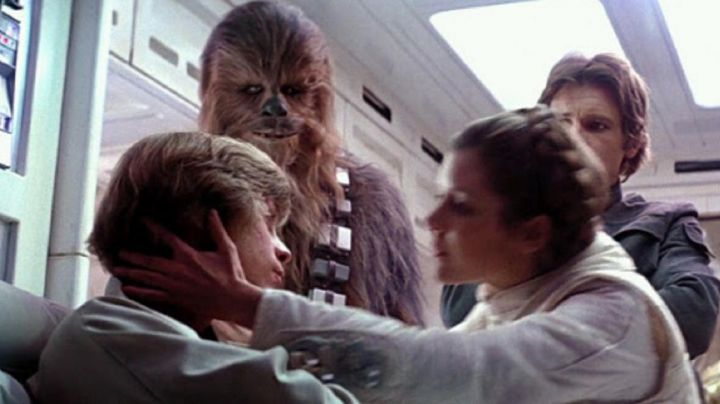 The wig of Princess Leia (Carrie Fisher) in Star Wars V : The empire strikes back Movie