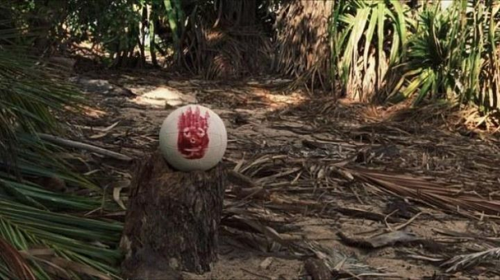 Wilson Volleyball of Chuck Nolan (Tom Hanks) as seen in Castaway - Movie Outfits and Products