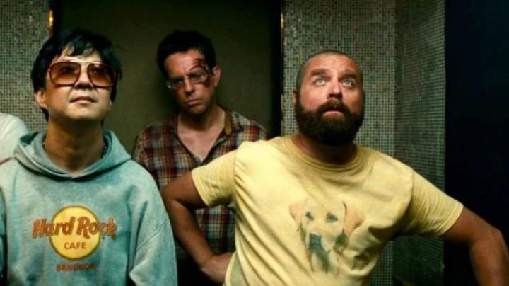 Yellow Lab 'Faithful Friend' worn by Alan (Zach Galifianakis) in The Hangover 2 - Movie Outfits and Products