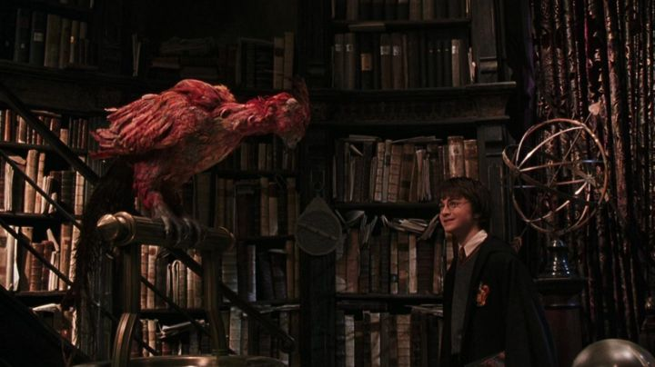 """the Phoenix Fawkes to Albus Dumbledore (Richard Harris) in """" Harry Potter and the chamber of secrets - Movie Outfits and Products"""