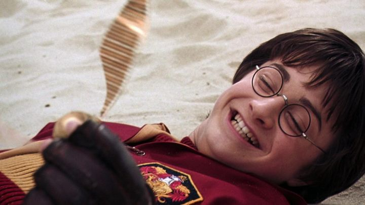 the bright gold caught by Harry Potter (Daniel Radcliffe) in Harry Potter and the chamber of secrets movie