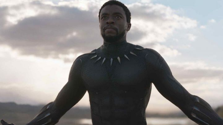 the costume of the Black Panther (Chadwick Boseman) in a Black Panther - Movie Outfits and Products
