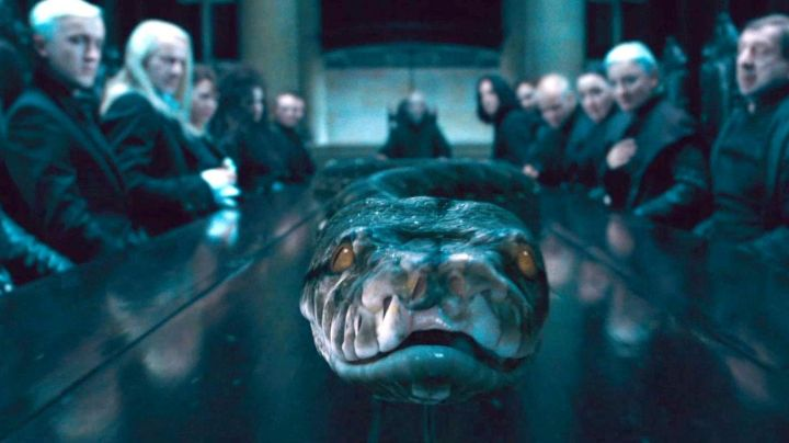the magical creature Nagini in Harry Potter and the goblet of fire - Movie Outfits and Products