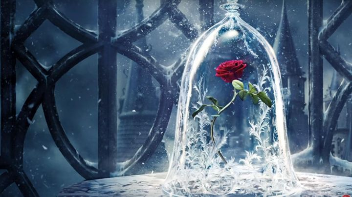 the shosh glass with its rose red eternal beauty and the Beast - Movie Outfits and Products