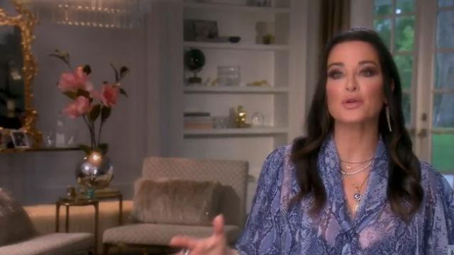 Diane von Furstenberg Nami Blouse outfit worn by Herself (Kyle Richards) in The Real Housewives of Beverly Hills (S09E19) - TV Show Outfits and Products
