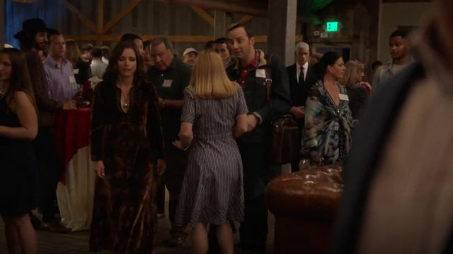 Etro Paisley Print Velvet A Line Granny Dress outfit seen on Selina Meyer (Julia Louis-Dreyfus) in Veep (S07E02) - TV Show Outfits and Products