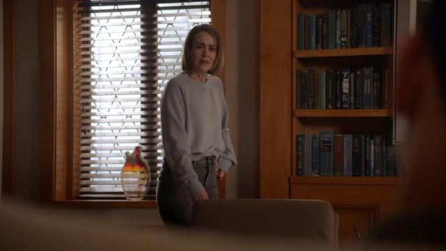 Gray sweater from Allyson Mayfair-Richards (Sarah Paulson) seen in American Horror Story : Cult Season 7 Episode 5