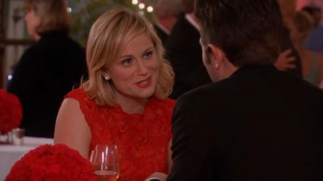 Karen Millen Coloured lace dress outfit worn by Leslie Knope (Amy Poehler) in Parks and Recreation (S05E13) - TV Show Outfits and Products