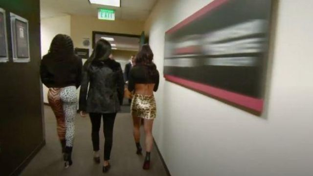 Leopard embellished zip detail mini skirt outfit worn by Leah Van Dale (Carmella) in Total Divas Season 09 Episode 01 - TV Show Outfits and Products