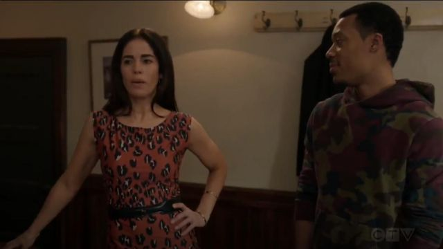 Rachel Comey Medina Leopard Print Sheath Dress outfit worn by Susan Sampson (Ana Ortiz) in Whiskey Cavalier (S01E12) - TV Show Outfits and Products