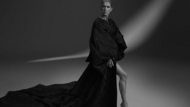 Robe bouffante of Celine Dion in Celine Dion - Imperfections - Youtube Outfits and Products