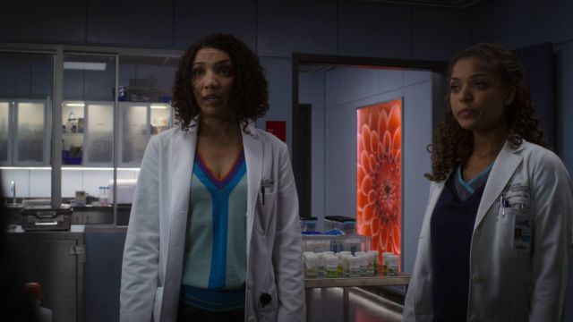 Sweater outfit worn by Carly (Jasika Nicole) seen in Good Doctor Season 1 Episode 9 - TV Show Outfits and Products