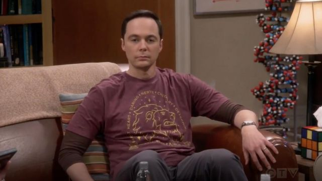 """T-shirt Harry Potter """"Gryffindor"""" by BoxLunch outfit worn by Sheldon Cooper (Jim Parsons) seen in The Big Bang Theory S12 Episode 6 - TV Show Outfits and Products"""