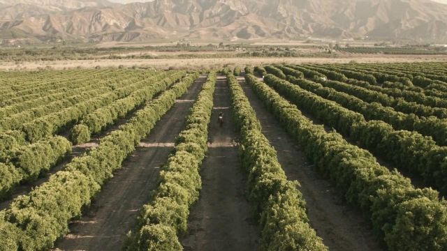 The fields of the town of Piru in California in the clip Wake Me Up of Avicii - Youtube Outfits and Products