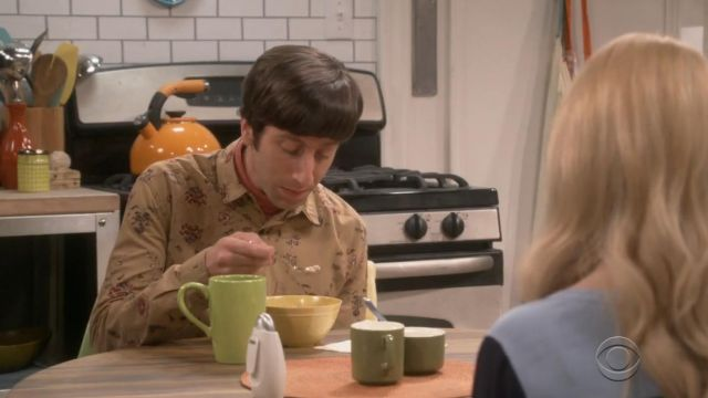 Your Neighbors Ornate Floral Button Down Shirt outfit worn by Howard Wolowitz (Simon Helberg) in The Big Bang Theory (S12E22) - TV Show Outfits and Products